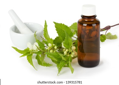 Stinging nettle with medicine bottle isolated on white background