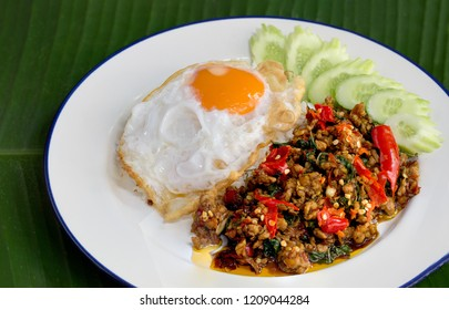 Stir Fried Chicken with Holy Basil and Fried egg, on rice in white dish popular thai food, on green banana leaf  / Select focus