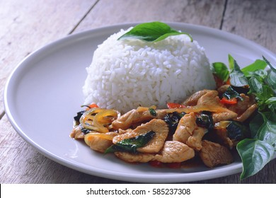 stir fried chicken with roasted chili paste and sweet basil leaf on jasmine rice, thai food.