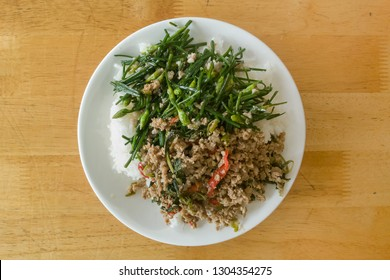 stir fried holy basil pork and vegetable eat with rice
