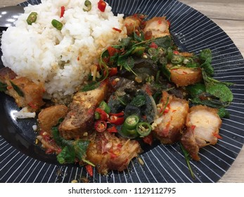 Stir Fried Spicy Crispy Pork with Thai basil, crispy pork with Thai basil, which is crispy pork belly with Thai basil., crispy pork belly with Thai basil on rice.