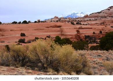 stirring scene of eroded sandstone and snowy mountain peaks,   near looking glass arch,  south of moab, utah