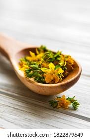 St.John's wort flowers on the wooden spoon