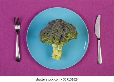 stock image of broccoli on blue plate. weight loss concept