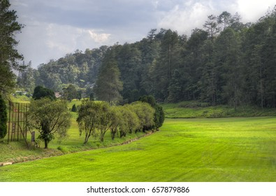 Stock image of Fraser's Hill, Malaysia