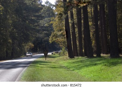 Stock image of Natchez Trace.  Native American paths that were later used by white settlers.