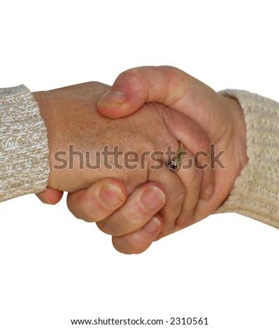 协议在朋友之间由握手显示 商业图片: 231056