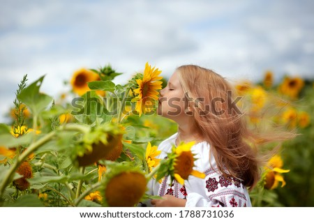 A beautiful girl in an embroidered shirt with fluttering hair sniffs a sunflower flower. Ukraine's Independence Day. Postcard, poster, calendar Foto stock ©