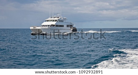 a catamaran style boat ferries passengers around a bay on the ocean on a grey day