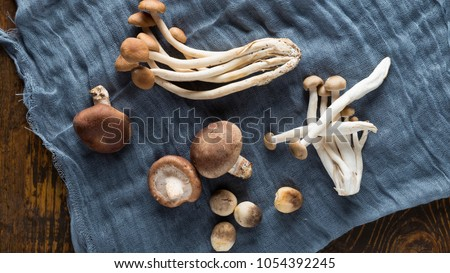 A combination of straw mushroom, tea mushroom, shiitake mushrooms, etc. on a wooden board, gauze for background