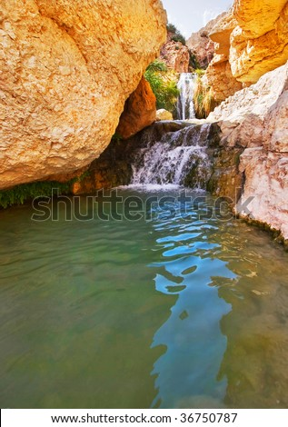 A falls and the river in reserve on the Dead Sea in Israel