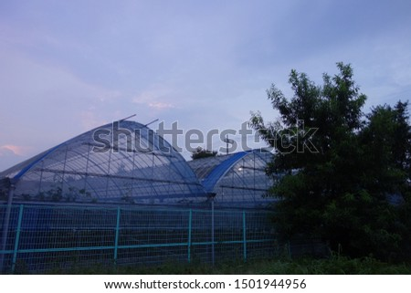 A greenhouse in the suburbs of Tokyo at twilight time.