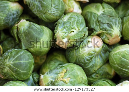 a lot of brussels sprouts  for background uses
