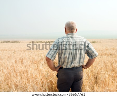 A man standing in field of wheat - stock photo