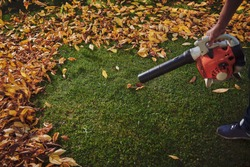 A man working with a leaf blower: sweeps the leaves off a green lawn