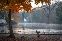 A morning view of Avalon park and preserve, Stony Brook, New York,  with a white house in the background and mists and water fowls on the pond.