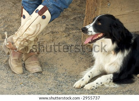 A pair of worn cowboy boots and the owners dog