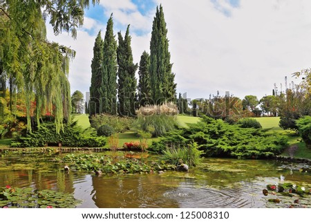 A pond, overgrown with lilies, weeping willows and cypresses. A quiet corner of the picturesque park in Europe