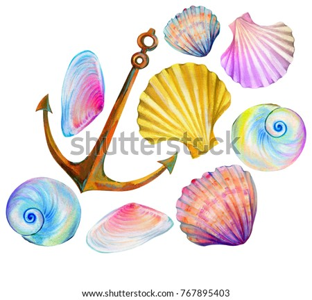 a set of amazing sea shells and an anchor. iridescent opalescent shells and clams.