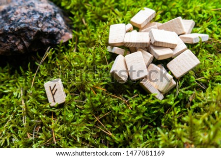 A set of Scandinavian runes made on wooden planks lies on a natural moss, next to the Fehu rune, attracting wealth. Fortune telling tool, concept for predicting the future.