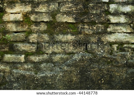A wall in an old house