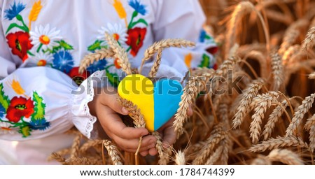 A yellow and blue heart and spikelets of wheat in the hands of a child in an embroidered shirt ( vyshyvanka). Wheat field at sunset. backlightю Ukraine's Independence Day Foto stock ©