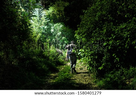 Adventurous traveler walking through a forest among the vegetation,Space for text
