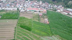 Aerial view Land use change from green forest to residential land and agriculture
