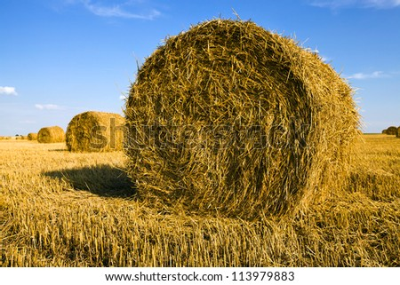 an agricultural field on which lie a straw stack