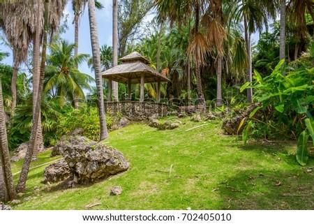 Andromeda Botanic Gardens, Barbados, Caribbean