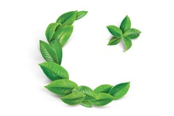 14 August  23 March Pakistan Day and Happy Independence Day Green Tea Flag Leaves Design with Golden Star and Moon