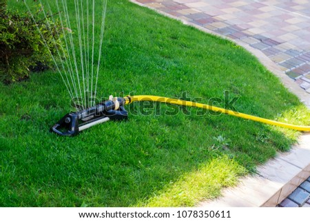 Automatic watering of the lawn near the yard #1078350611