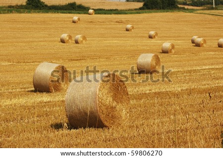 Autumn, harvesting. Bales of straw.