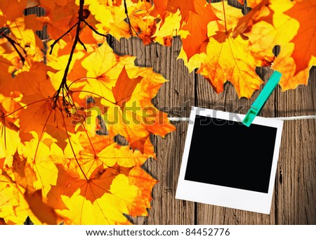 Autumn leaves and the frame of an old photo