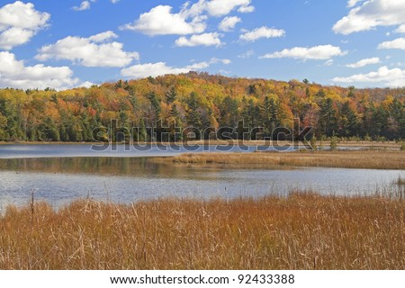"""Autumn Strikes"" -- Sleeping Bear Dunes National Lake Shore, Empire, Michigan, USA."