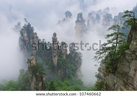 """""""Avatar mountains"""" in Zhangjiajie National Park, Hunan, China"""