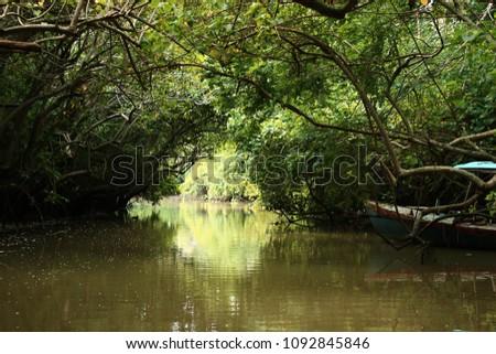 """Back water, Kerala"" Peaceful boating trip can give amazing Pics. Kerala, India"