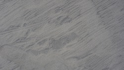 Background, texture, wave pattern of oceanic sand on the beach, black. Texture of beach sand. Black beach sand.