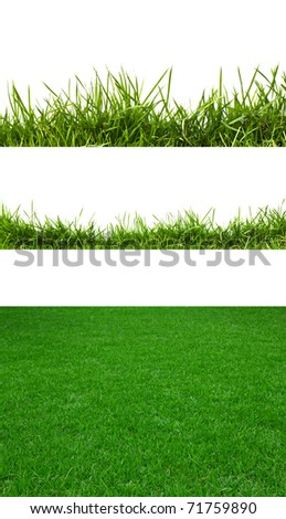 3 backgrounds of fresh spring green grass Isolated On White