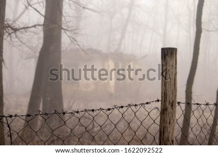 Barbed wire fence in front of an old demolished house . Barbed wire fence in the fog. Old demolished house in the forest . Fence with wooden poles .