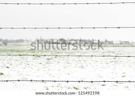 barbed wire on  winter country background