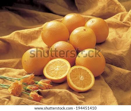 8 Beads of Orange #194451410