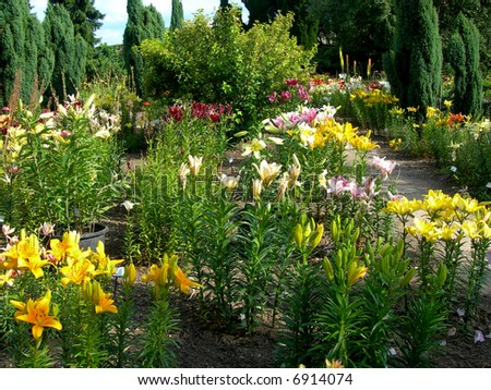 Beautiful botanical garden with daylily and many plant species