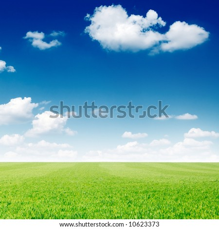 beautiful clouds and a green field