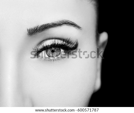 Beautiful Eyes Make up detail, perfect beauty eyebrows #600571787