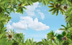 Beautiful green palm trees on a background of light blue sky. Art ceiling. 3D Wallpaper.