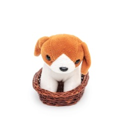 Beautiful stuffed toy dog with red ears sits in a basket on white background close-up. Puppy pet, small plush toy for child.