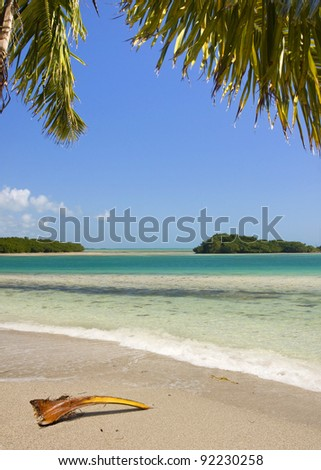 Beautiful Summer landscape with palm trees, blue sky and clear ocean water. Taken in tropical paradise of Bahia Honda Key in Florida, USA.