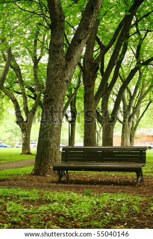 bench in a quiet park