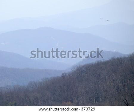 2 birds over South Carolina mountains.